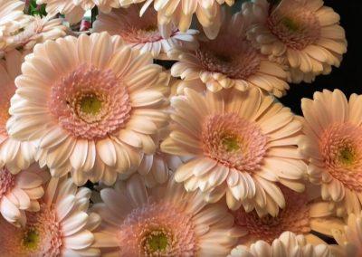 Blumen-bestellen-rosenheim