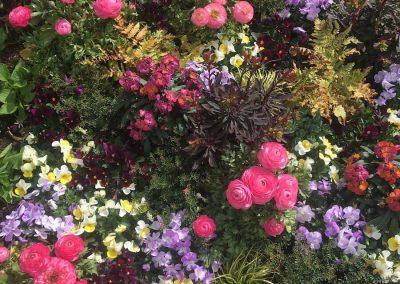 Blumen-kaufen-raubling