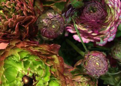 Blumen-online-kaufen