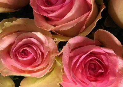 Blumen-online-raubling