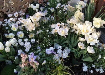 Blumen-raubling
